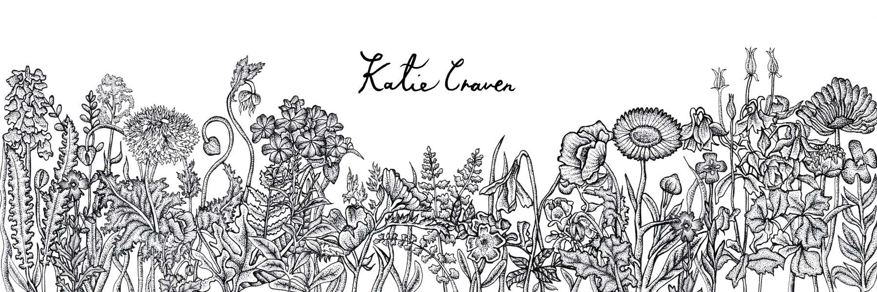 Katie Craven Illustration